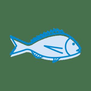 Dessin poisson marin